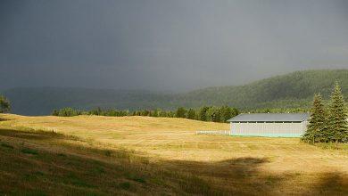 Сельское хозяйство Канады